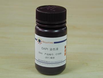 dapi染色液/细胞核染色
